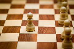 Pawn Stock Photography
