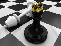 Pawn defeated King Royalty Free Stock Images