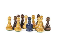 Pawn of a Different Color Royalty Free Stock Image