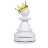 Pawn with gold crown Royalty Free Stock Photo
