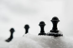Pawn on snow Stock Photos