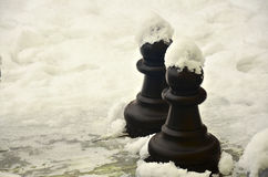 Pawn on the snow Royalty Free Stock Photo