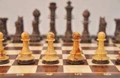 Pawns on chess board Stock Photo