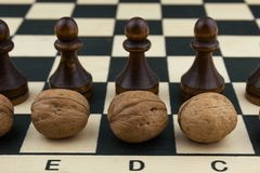 Nuts and chess Stock Photography