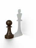 Pawns shadow Stock Images