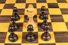 Pawns surrounding king Royalty Free Stock Photography