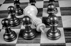 Pawns surrounding king Stock Photography