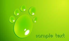 Pawprint de Eco com waterdrops Fotografia de Stock