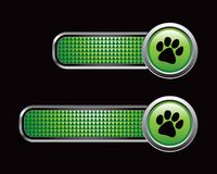 Pawprint on green checkered tabs Royalty Free Stock Image