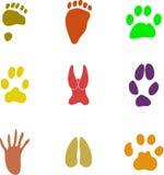 pawprint kształty ilustracji