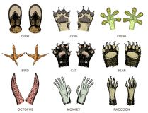 Paws of animals or footprints and wildlife. Bird and sea creatures, hands of monkey and dog, bear and frog, tentacles of. Octopus and cat, hoof of cow. Domestic Royalty Free Stock Photography