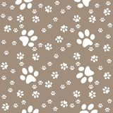 Paws brown pattern, paw background, vector illustration vector illustration
