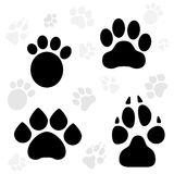 Paws and Claws Print Stock Images