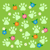 Paws and flowers Stock Photos