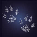 Paws made up a lot of snowflakes Royalty Free Stock Photo