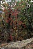 Pawtuckaway山-细节 图库摄影