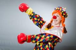 Payaso con los guantes de boxeo aislados en blanco Imagenes de archivo