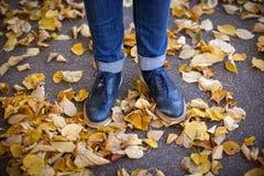 Paye au sol avec des feuilles d'automne, chaussures bleues Images stock