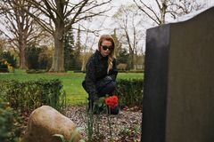 Paying her respect to deceased family member. Young female grieving at cemetery. Young lady placing roses on the grave of her family member Stock Image