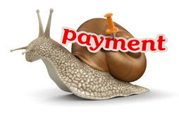 Payment Snail (clipping path included) Stock Photography