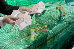 Payment for worker at construction site Stock Photo
