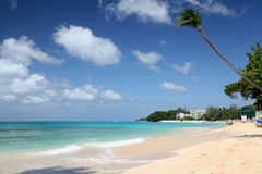 payne s пляжа залива Барбадосских островов Стоковые Фото
