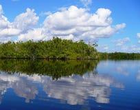Pays arrière de marais Photo stock