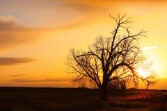 Pays de début de la matinée de lever de soleil Photographie stock libre de droits