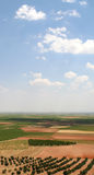Pays de Don Quijote photos libres de droits
