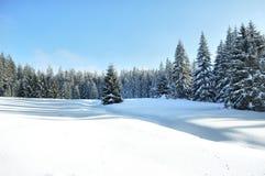 Pays de l'hiver Photo libre de droits