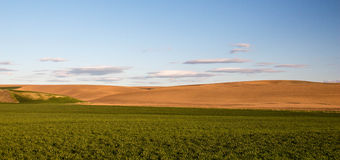 Pays de Palouse Photos stock