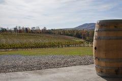 Pays de vin image libre de droits