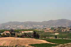 Pays de vin Images stock