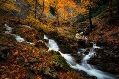Pays des merveilles d'automne image libre de droits