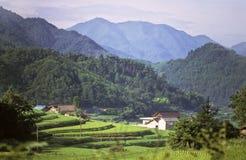 Pays japonais Photo libre de droits
