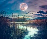 Paysage à la nuit dans le lac de forêt avec la lune superbe de vieille galoche et de ciel d'obscurité à l'arrière-plan image stock