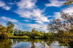 Paysage à travers la rivière d'Huron Images stock
