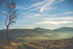 Paysage écossais balayé par le vent photographie stock libre de droits