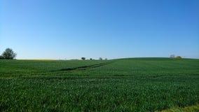 paysage Photos stock