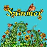 Paysage abstrait d'été dans le style de vintage, carte, couverture Fleurs jaune-orange sur un fond bleu Lumineux, juteux Illustration Libre de Droits