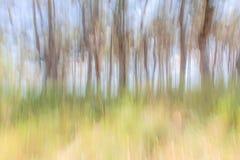 Paysage abstrait d'été de fond Photographie stock