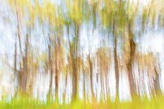 Paysage abstrait d'été de fond Images libres de droits