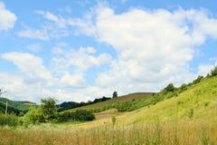Paysage accidenté complètement des herbes et d'un ciel bleu Photos libres de droits