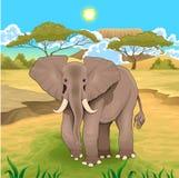 Paysage africain avec l'éléphant Photo libre de droits
