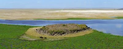 Paysage africain avec le lac Image libre de droits