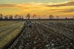 Paysage agricole avec le champ labouré frais Photo libre de droits