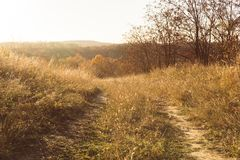 Paysage agricole d'automne en Nouvelle Angleterre, Etats-Unis photo libre de droits