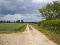 Paysage agricole de Yorkshire sous le nuage lourd d'été Images libres de droits