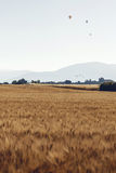 Paysage agricole en Provence, France Images libres de droits