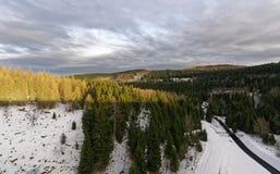 Paysage alpin avec les pins verts image libre de droits